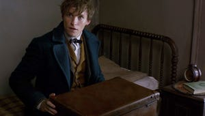 The First Trailer for Fantastic Beasts and Where to Find Them Will Give You Major Feels