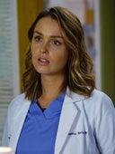 Grey's Anatomy, Season 13 Episode 4 image
