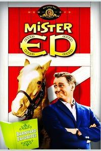 Mister Ed as Gordon Kirkwood