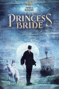 The Princess Bride as Westley