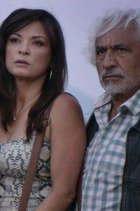 Elpidia Carrillo as Mercedes O'Keefe