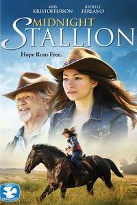 Midnight Stallion as Megan Shepard