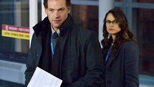 FX and FXX Set Summer Premiere Dates for The Strain, The Bridge and More