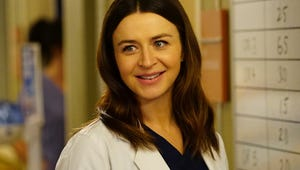 Grey's Anatomy: Should Amelia and Link Be a Thing or Just a Fling?