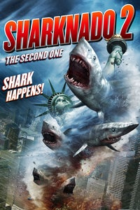 Sharknado 2: The Second One as Fin Shepard