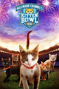 Kitten Bowl VII