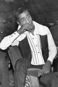 Sammy Davis Jr. as Himself