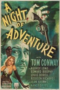 A Night of Adventure as Steve