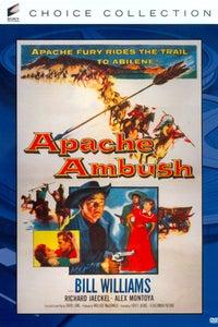 Apache Ambush as Silas Parker