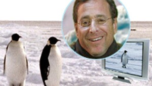 Bob Saget's Penguins Are Black and White and Very Blue
