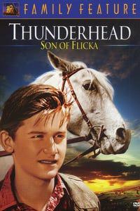 Thunderhead---Son of Flicka as Rob McLaughlin
