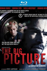 The Big Picture as Anne