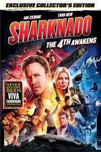 Sharknado: The 4th Awakens as Fin Shepherd