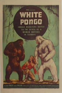 White Pongo as Van Doorn