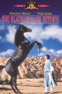 The Black Stallion Returns as Kurr