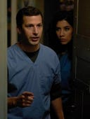 Brooklyn Nine-Nine, Season 3 Episode 23 image