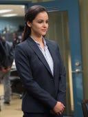 Brooklyn Nine-Nine, Season 1 Episode 13 image