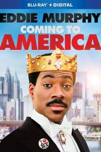 Coming to America as Semmi, Morris, Révérend Brown