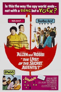 The Last of the Secret Agents? as Himself
