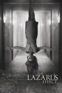 O efeito Lazarus
