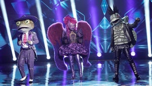 We Didn't Expect This Masked Singer Contestant to Win, But At Least We Correctly Guessed Their Identity