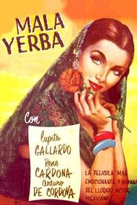 Mala Yerba as Chuy Rodríguez