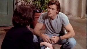 Melrose Place, Season 1 Episode 20 image