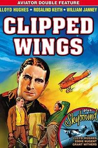 Clipped Wings as Fernando, Moran's Henchman