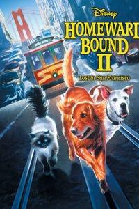 Homeward Bound II: Lost in San Francisco as Delilah