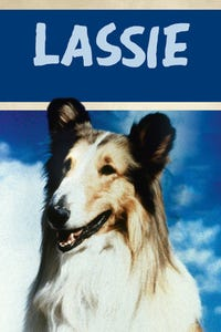 Lassie as Timmy Cabot