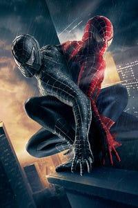 Spider-Man 3 as Miss Brant
