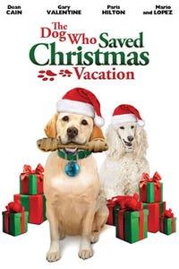 The Dog Who Saved Christmas Vacation as Stewey McMann
