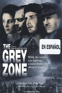 The Grey Zone as Rosa