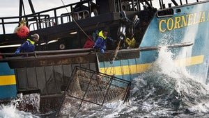 Deadliest Catch Will Have an Upgraded New Look in Season 15