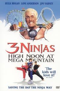 3 Ninjas: High Noon at Mega Mountain as Carl