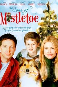 The Sons of Mistletoe as Jimmy Adams