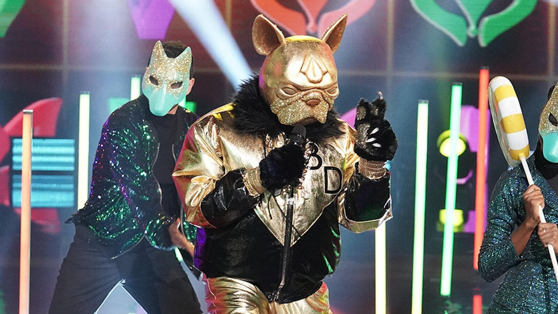 masked-singer-bulldog.jpg