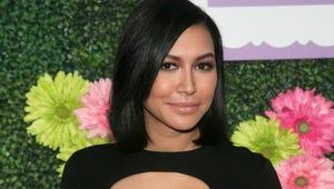 Glee Star Naya Rivera Arrested for Domestic Battery