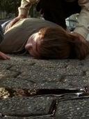 Masters of Horror, Season 2 Episode 7 image