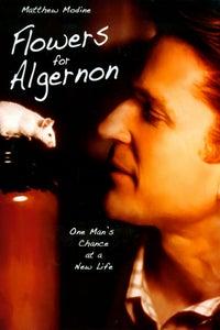 Flowers for Algernon as Alice