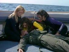 Baywatch, Season 7 Episode 18 image