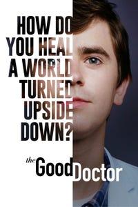 The Good Doctor as Chuck