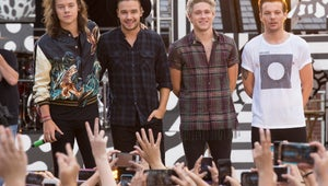 One Direction Reveals They've Been Skinny Dipping and Hooked Up With Fans on Ellen
