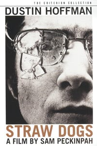 Straw Dogs as Henry Niles