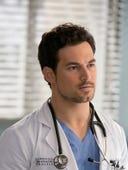 Grey's Anatomy, Season 15 Episode 17 image