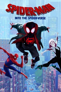Spider-Man: Into the Spider-Verse as Peter Parker