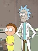Rick and Morty, Season 3 Episode 7 image