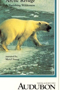 Arctic Refuge: A Vanishing Wilderness as Narrator