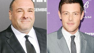 Emmys to Pay Special Tribute to James Gandolfini, Cory Monteith and More
