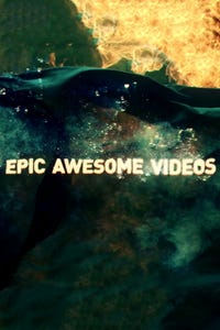 Epic.Awesome.Videos: Prince
